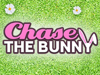 Chase The Bunny